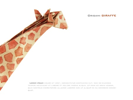 Origami paper giraffe on a white background Stock Photo - 17728437