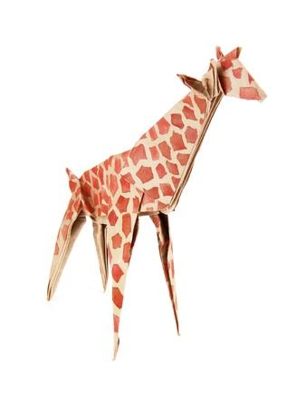 Origami paper giraffe on a white background Standard-Bild