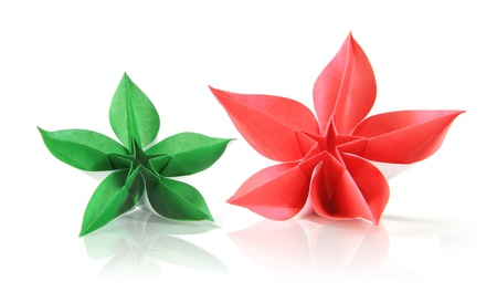 Flower exotic origami on a white background Stock Photo - 18152489