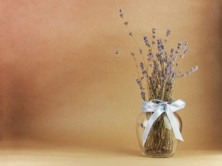 Art lavander background on a brown pper background Stock Photo - 18152551