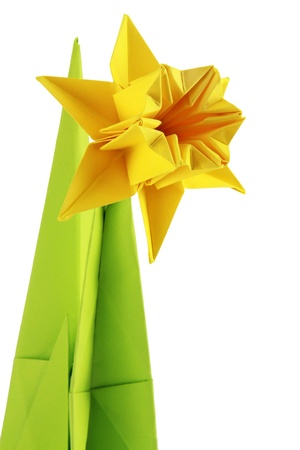 Origami yellow narcissus of paper on a white background Stock Photo - 18152498