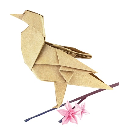origami oiseau: Brown printemps origami oiseau sur une branche sakura