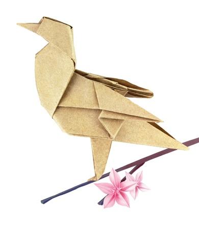 Brown spring origami bird on a sakura branch  Stock Photo