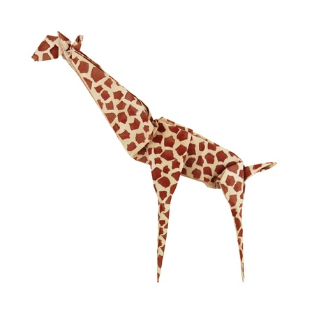 Origami paper giraffe on a white background Stock Photo - 18419685