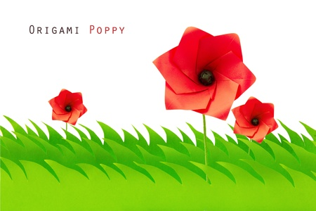 Green grass field with origami poppy on a white background Stock Photo - 20276611