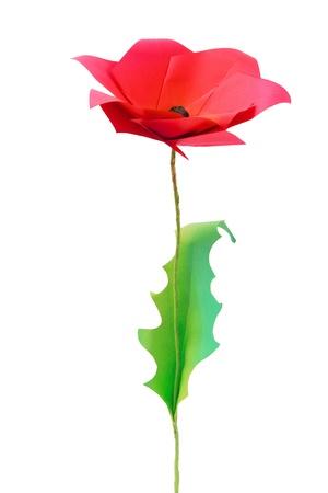 Origami poppy flower on a white bakground Stock Photo - 20276590