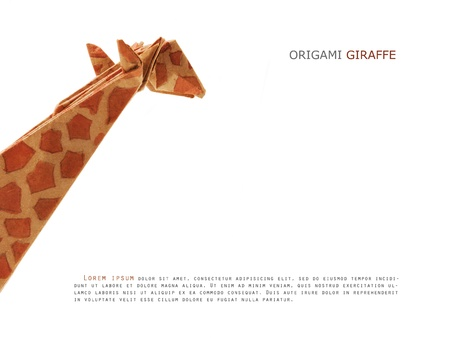Origami paper giraffe on a white background Stock Photo - 20276599