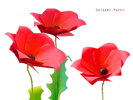 Origami poppy flower on a white bakground photo