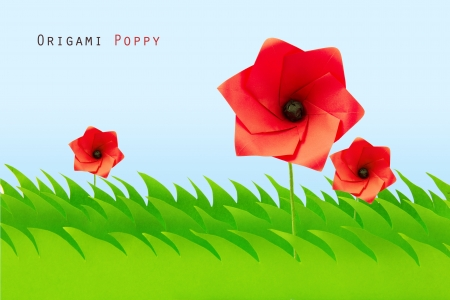 Green grass field with origami poppy on a sky background Stock Photo - 20276623