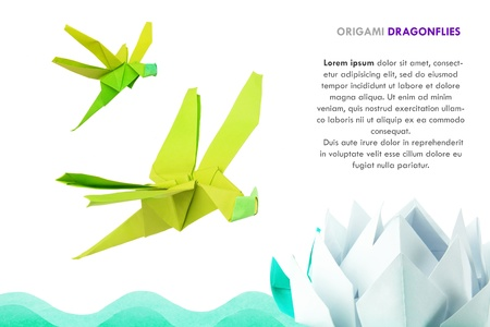 Origami dragonflies and river waves with lotus on white background