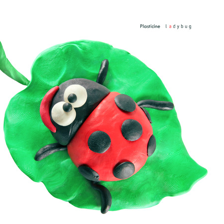 seeting: Plasticine cartoon ladybug seeting on a green leaf on a white