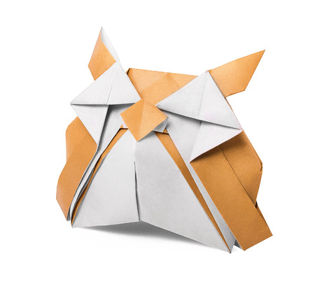 origami old paper owl on the white background photo
