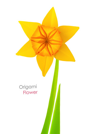 Origami spring yellow narcissus flower on a white background