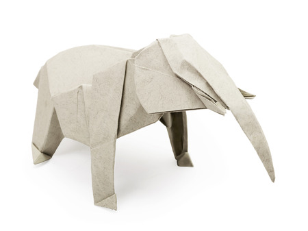 elephant trunk: Origami paper gray elephant on a white background