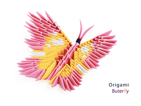 pink decorations: Pink 3d origami butterfly on the white background