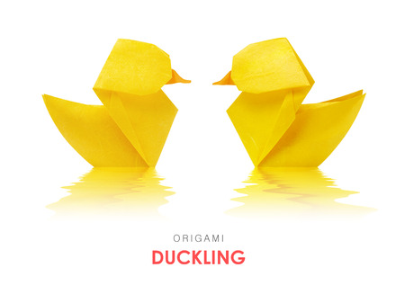 ducklings: Origami paper yellow ducklings pair floating in water on a white background