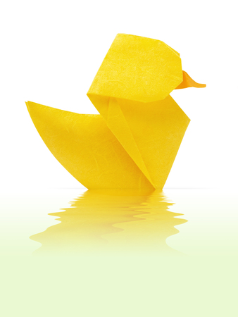yellow duckling: Origami paper yellow duckling floating in water on a green background