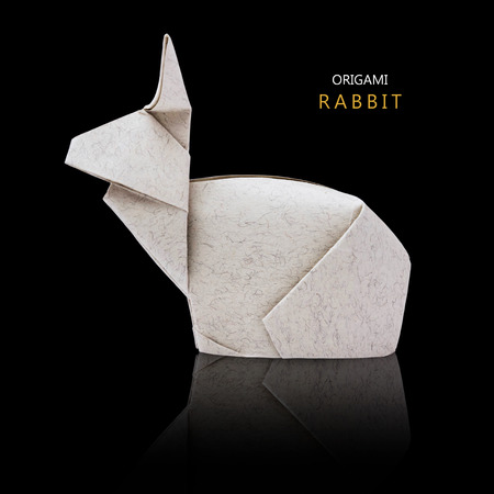 asian bunny: Origami gray paper isolated bunny rabbit on a black background