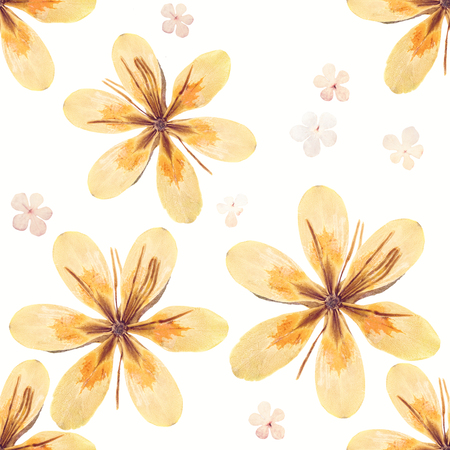 outumn: Pressed and dried flowers pattern