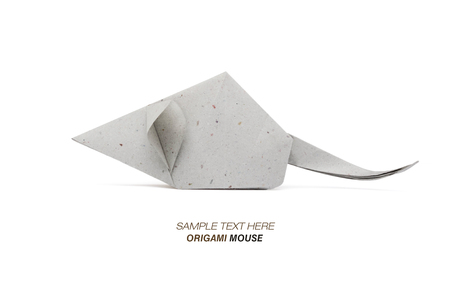 Origami Mouse Gray Stock Photo Picture And Royalty Free Image