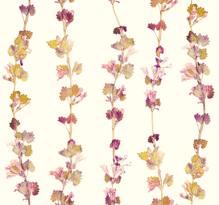 Herbs branch floral on yellow background pattern