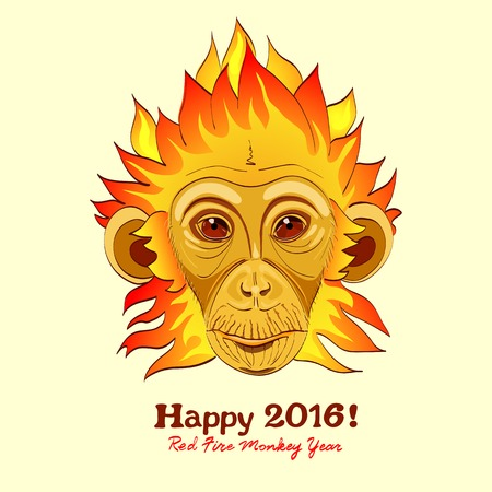 monkey silhouette: Redhead Fire Monkey as New 2016 Year symbol. Vector illustartion in eps8 format. Illustration
