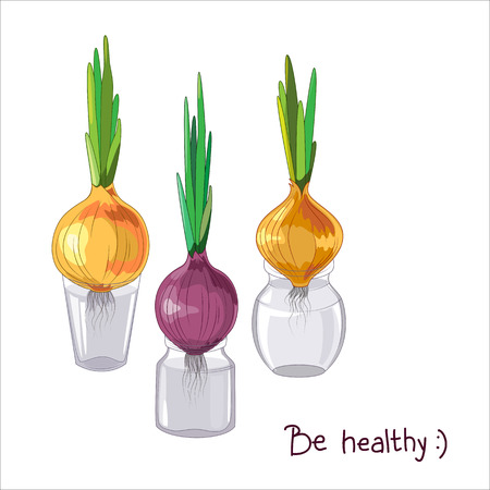 onions: Spring onions in glass jars, healthy food, spring concept.