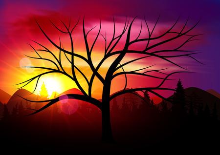 horizont: Sunset, Sunrise with Black Tree Silhouette. Mountains Panorama. Beautiful Sunset.