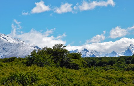 chalten: Panoramic view of mountain range in El Chalta  n in Argentina with a forest in the foreground and snow covered mountains in the background on a sunny day