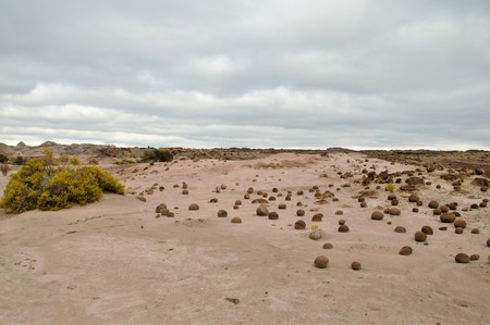 자연 보호구에서 공 필드의 긴 총 Ischigualasto라고도 아르헨티나, 남아메리카 지역 샌 후안에서 발레 드 라 루나