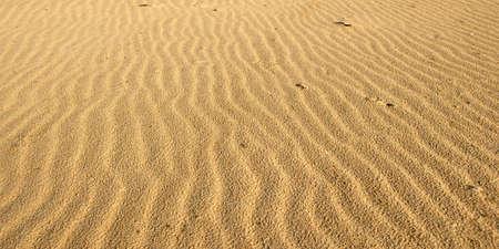 wind blown: Wind blown texture in the sand