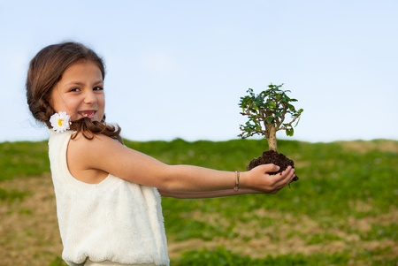 tree concept for nature and invironment Stock Photo - 13278338