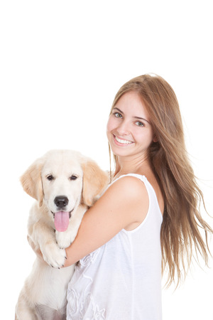Huisdier golden retriever puppy dog Stockfoto - 22253334