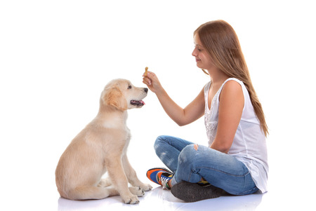 owner training puppy dog with treat