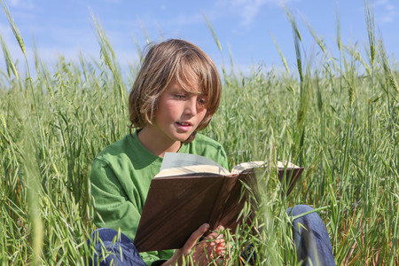 child reading book or bible outdoors in summer.