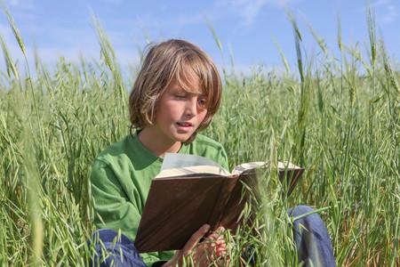 Libro de lectura del niño o al aire libre en verano biblia.