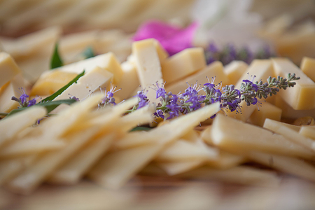 dairy cheese platter, healthy eating.