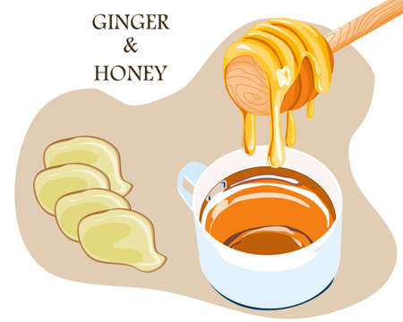 ginger slice and sweet honey and a cup of tea on white background, vector illustration of traditional medicine Ilustracja