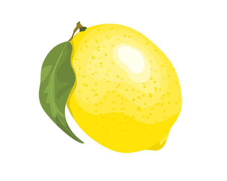 yellow lemon with leaves isolate on white background vector illustration