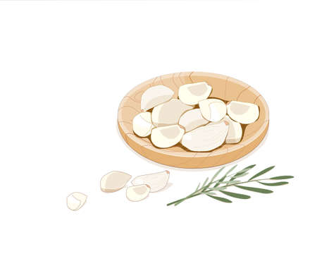 Isolated unpeeled garlic cloves in wooden plate with rosemary decoration on white background. Hand drawing food and herb ingredients vector illustration.