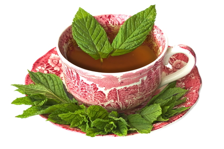 Isolated Cup of peppermint tea with fresh mint leaves photo