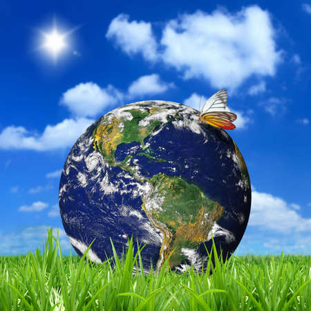Ambient and nature of the earth Stock Photo