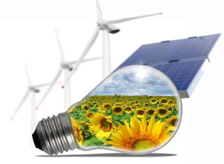 Ökologische Lampe