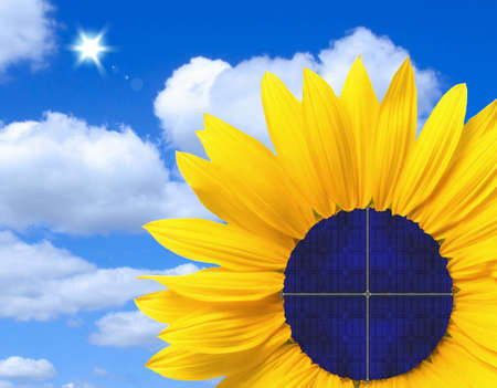Solar panel in a sunflower photo