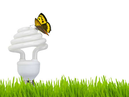 Eco bulb: lower part lamp consumption with butterfly. photo