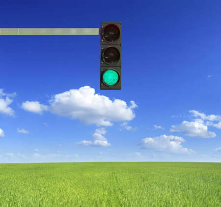 Traffic light on a green field in a sunny day.