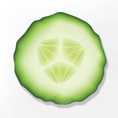 Vector Cut Out Sliced Cucumber Flat Lay Illustration.