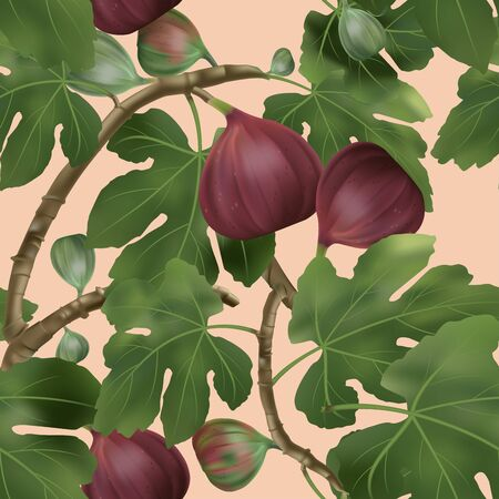 Vector 3D illustration Common Fig Tree Seamless Pattern in Coral Background
