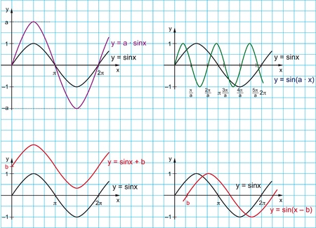 sinusoidal: This vector image in AI format shows the sine function on a light blue grid, as well as stretching, compression, and displacement  Illustration