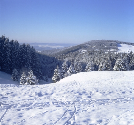 Panoramic view of a snowy winter landscape in the low mountain2400 dpi scan from 6x6 slide (not interpolated magnification) Stock Photo - 17225673